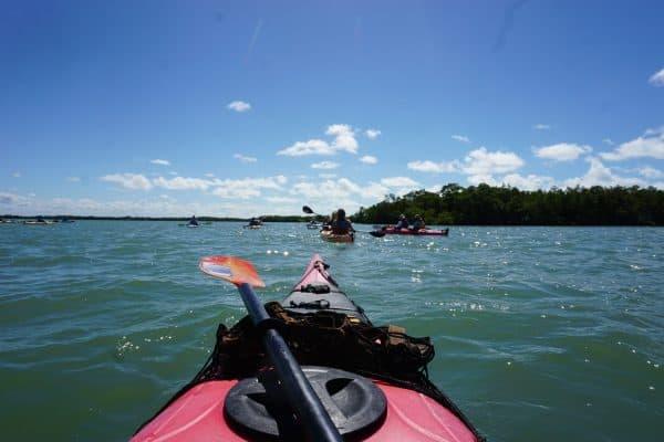 evergladesSN1-600x400 Everglades trip