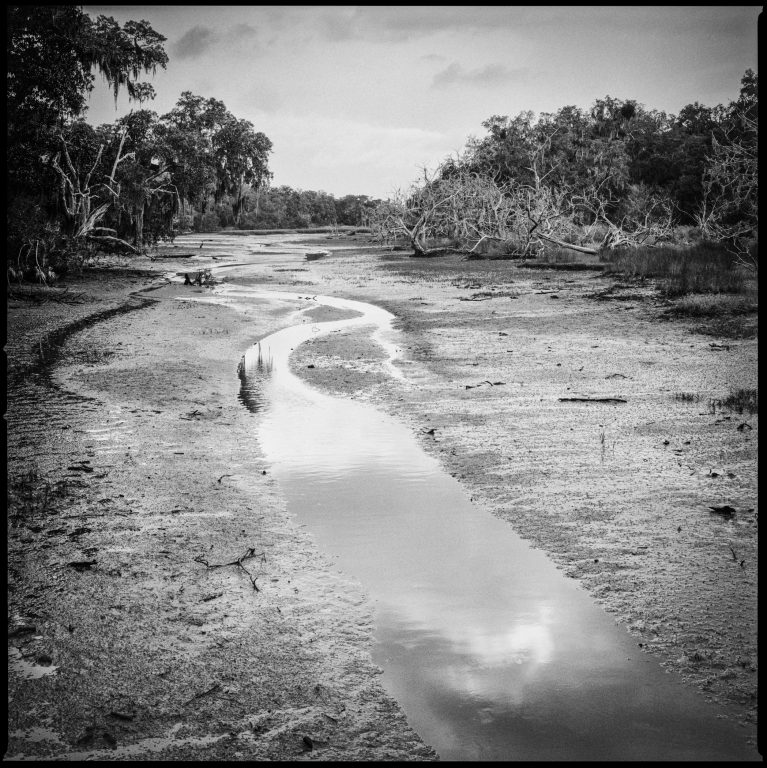 bowden W&L's Staniar Gallery Presents 'Cumberland Island: Land, Water, Wind, and Light'